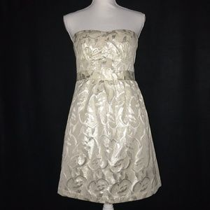 NWT American Eagle Strapless A Line Dress 8
